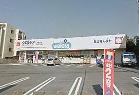 ウエルシア水戸新原店まで2100m (車10分)