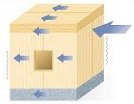 地震に強い!2×4工法という面構造で地震の揺れを分散!