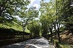 奥武蔵の豊かな自然に優しく包まれた「暮らし」のある場所。約1200の家族が暮らす豊かな街。「西武飯能日高分譲地」