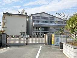 中牟田中学校ま...