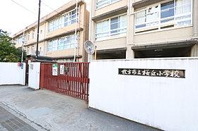 桜丘小学校徒歩14分