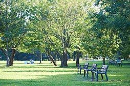県立北総花の丘公園(約700m/徒歩9分)