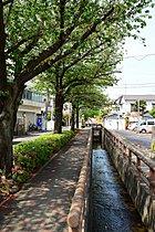 閑静な洗足池エリアに誕生(写真:周辺街並み)