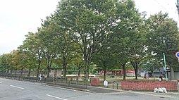 早稲ノ内公園