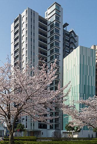 一条レジデンス三河安城(ICHIJO RESIDENCE MIKAWA-ANJO)