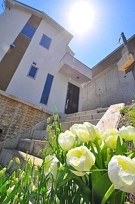 ゆったりとした庭とヘーベルパワーボードの外壁を持つ2階建て