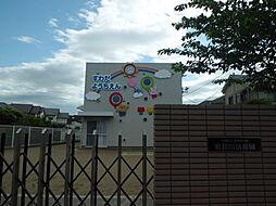 幼稚園須和田幼...