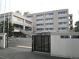 東京都立国分寺高等学校