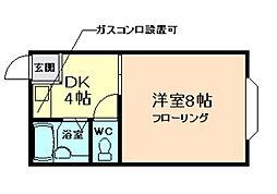 大阪府池田市鉢塚3丁目の賃貸マンションの間取り