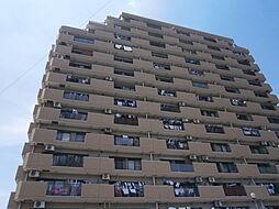 愛知県岡崎市昭和町字中屋敷の賃貸マンションの外観