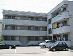 滋賀県長浜市南高田町の賃貸マンションの外観