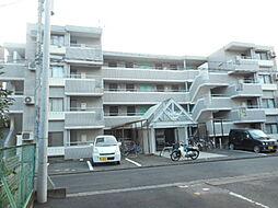 埼玉県坂戸市山田町の賃貸マンションの外観