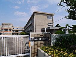 [一戸建] 兵庫県加古川市野口町二屋 の賃貸【/】の外観