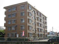 池田ビル[402号室]の外観