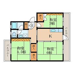 滋賀県大津市美空町の賃貸マンションの間取り