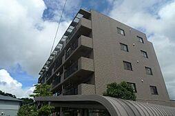 パインクレスト3号館[504号室]の外観