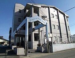 アザレアハイツ江崎[305号室]の外観