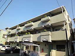 三栄東大成ハイツ[201号室]の外観