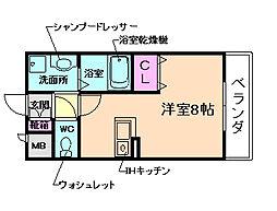 Avenue Haru(アベニュー・ハル)[4階]の間取り