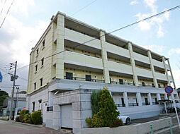 カーサジアラ[1階]の外観