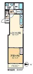 ヘーベルメゾン亀戸 2階1LDKの間取り