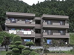 JR五日市線 武蔵五日市駅 徒歩11分の賃貸マンション