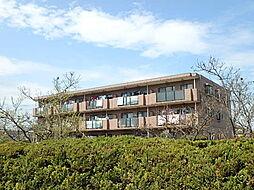 リヴェール高幡1[305号室]の外観