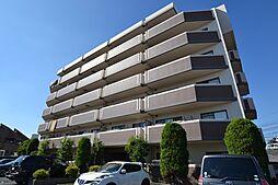メゾンドプリマベーラ[6階]の外観