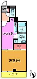 千葉県船橋市夏見4丁目の賃貸マンションの間取り