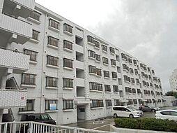 神奈川県横浜市保土ケ谷区境木本町の賃貸マンションの外観