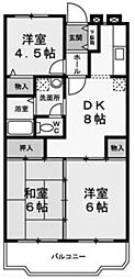 神奈川県川崎市多摩区菅馬場1丁目の賃貸マンションの間取り
