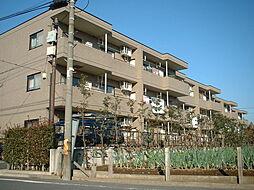 東京都練馬区田柄5丁目の賃貸マンションの外観