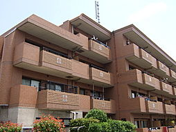 神奈川県川崎市宮前区南平台の賃貸マンションの外観