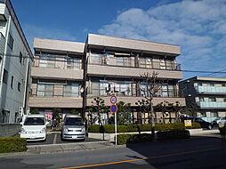 埼玉県川口市本前川1丁目の賃貸マンションの外観