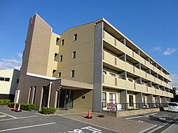 滋賀県彦根市西沼波町の賃貸マンションの外観