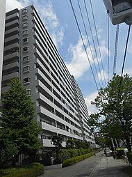 日吉ロイヤルマンション[1107号室]の外観