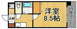ラフィネ荒江[203号室]の間取り