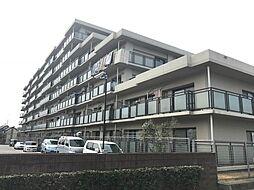 千葉県柏市塚崎1丁目の賃貸マンションの外観