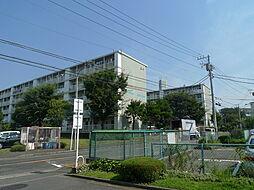 藤沢西部[3FB号室]の外観