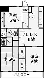 モンターニャ・トゥレ・生田[5階]の間取り