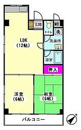 WELL KAWADA[3階]の間取り