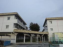 千葉県市川市東菅野5丁目の賃貸マンションの外観