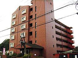 ハイツ逢坂(オウサカ)[202号室]の外観