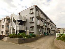 神奈川県厚木市水引2丁目の賃貸アパートの外観