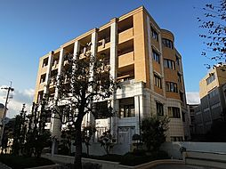 カーサグラシア[6階]の外観