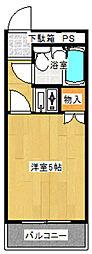 神奈川県川崎市多摩区東生田1丁目の賃貸マンションの間取り