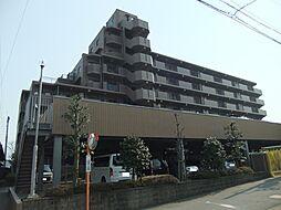 新上挙母駅 8.5万円