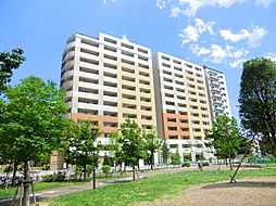 西新井駅 11.8万円