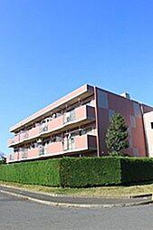 サンクレストKAWADA1[301号室]の外観