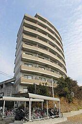 セラヴィ坂崎[9階]の外観